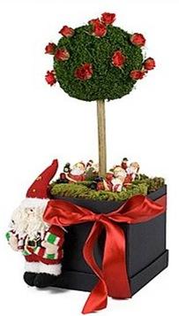 Casa de Valentina - Flora Flores - prasente de Natal