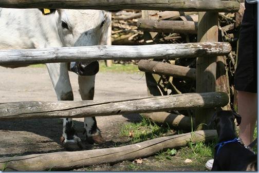 Tierpark 081