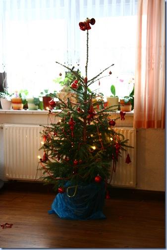 Weihnachten 2009 004