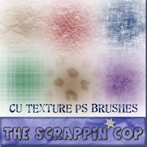 SC_TextureBrushPrev