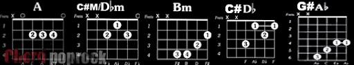 Belajar Chord Guitar Pemula