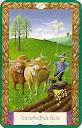 Signification des cartes KIPPER Mystiques 27