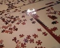 Solving the Puzzle I - Sheva Apelbaum