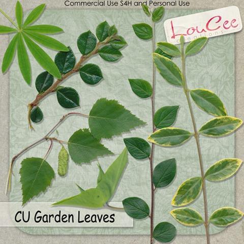 lcc-GardenLeaves-Preview