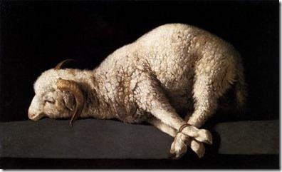 bound lamb 3