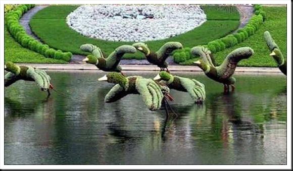 Esculturas con el cesped. Esculturas-vegetales-20%20(1)_thumb%5B6%5D
