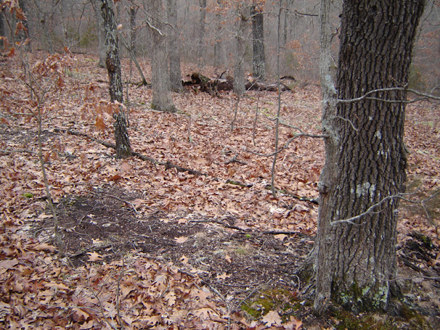 Deer Scrapes http://www.ar15.com/forums/t_10_12/642759_Question_About_Deer_Scrapes.html