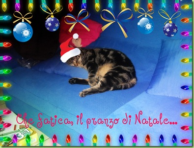 natale 2010 (58)