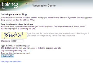 Bing SERP, Search Engine Result Page, SERP