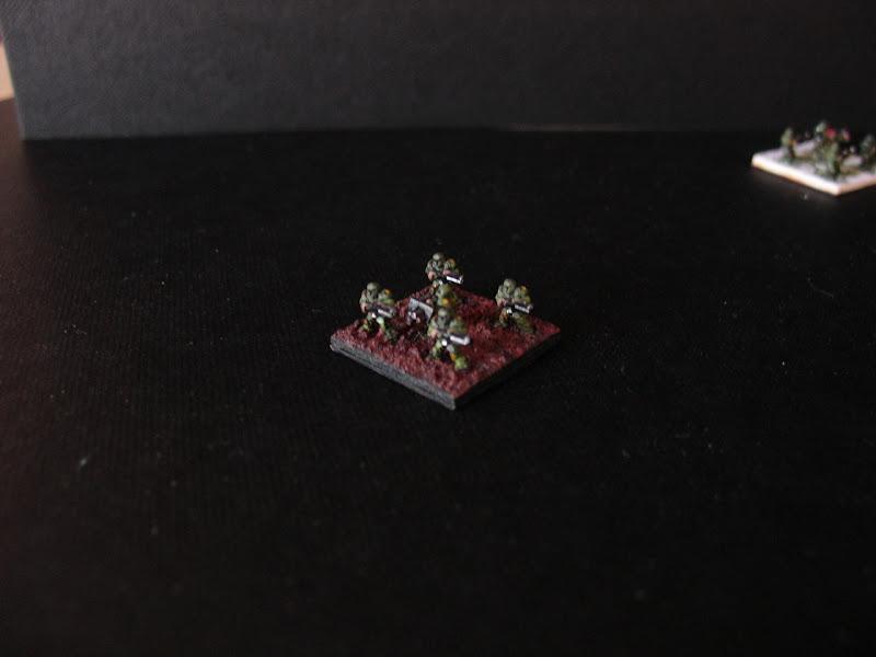 mcnug - Garde Impériale 5000 points DSC05066