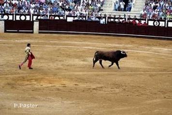 concha_y_sierra_3_a_toriles