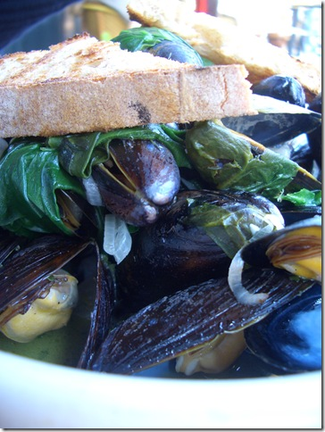 left bank mussels