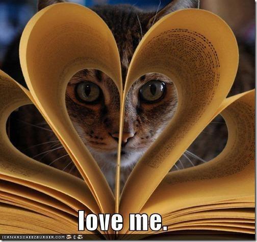 gatos divertidos patatitasylimones (5)