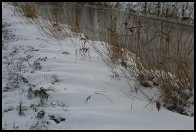 Sneeuw dec. 2009 003