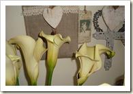 bloemen 005