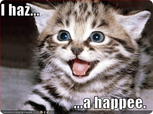 funny-pictures-kitten-has-a-happy