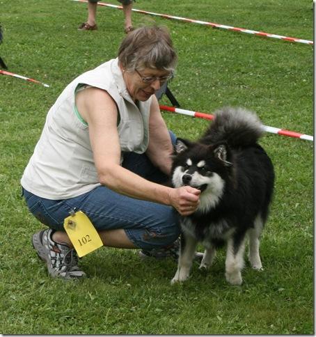 Inger og Chico i utstillingsr 2-8-08