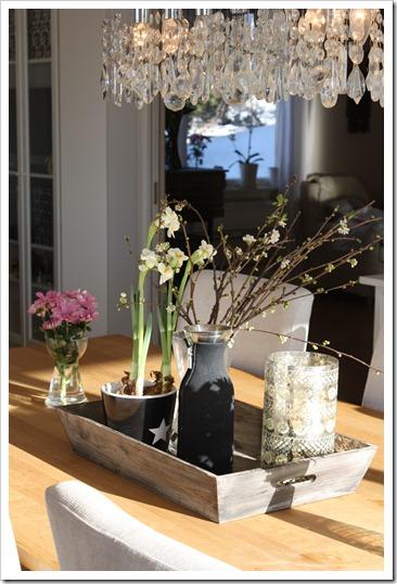 februar hjem og bursdag haakon 021