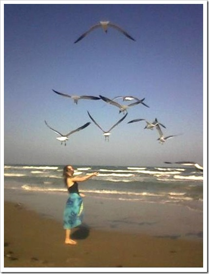 Rebekah feeds the seagulls