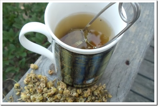 tea chamomille