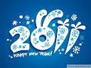 Новый Год 20111