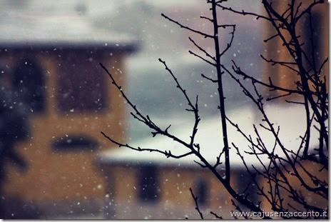 foto sara