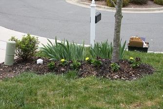 April 2009 053