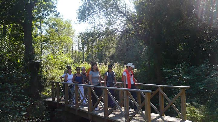 camiñando pola ponte
