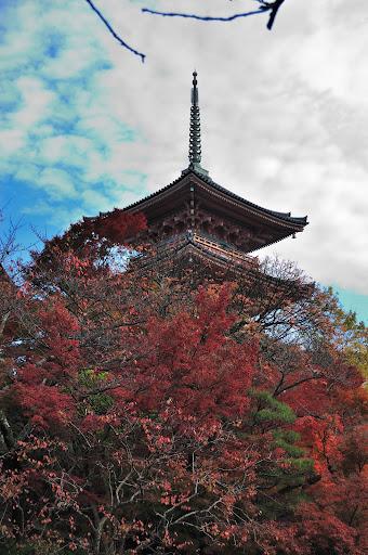 清水の三重塔と紅葉の写真