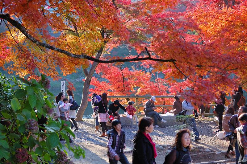 香嵐渓の入り口の紅葉の写真