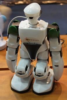Семейный развлекательный робот