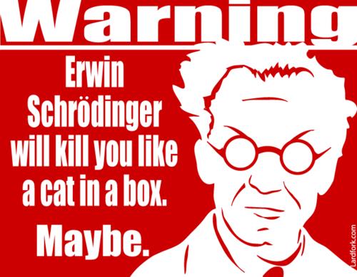 Осторожно, Эрвин Шрёдингер может убить вас, как кота в коробке!