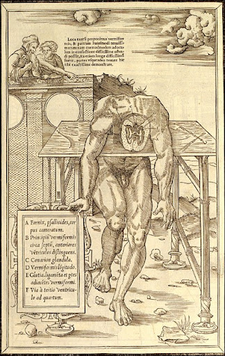 Charles Estienne (1504-ca. 1564) (author); Étienne de la Rivière (d. 1569) (anatomist) Paris, 1546. Woodcut
