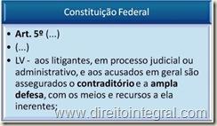 Constituição Federal - Art. 5º, LV - Princípios do Contraditório e da Ampla Defesa.