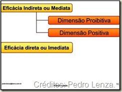 Teoria da Eficácia Indireta ou Mediata e Teoria da Eficácia Direta ou Imediata dos Direitos Fundamentais.