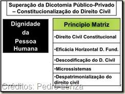 Dignidade da Pessoa Humana, Constitucionalização do Direito, Superação da Dicotomia Direito Público - Direito Privado
