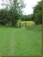 IMG_0002 fieldpath to Crick