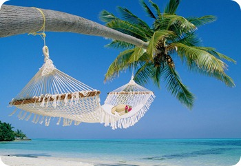 travel-business-hammock-beach1
