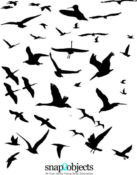 brushes aves