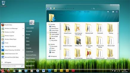 skull-desktop-theme