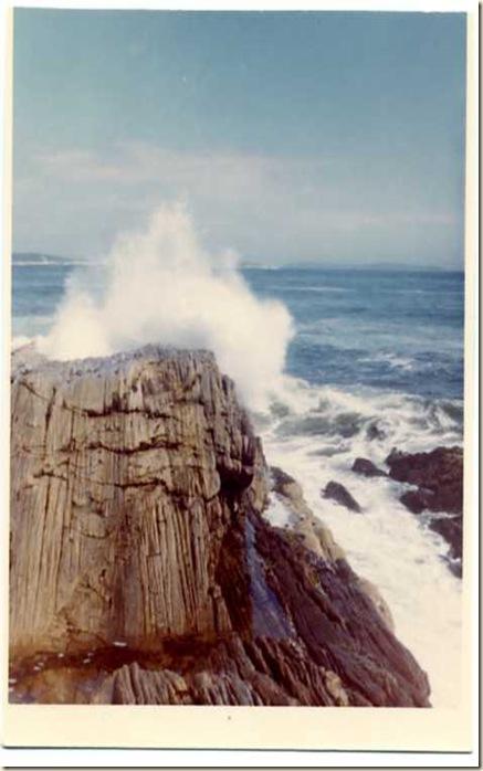 Back shore 1966
