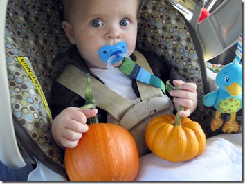 jace and his pumpkins