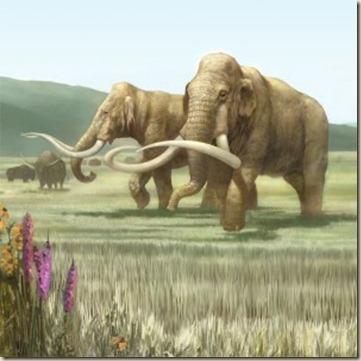 mamut3