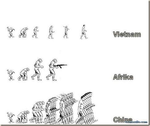 evolucion_3