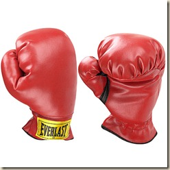 everlast-boxing-gloves-cd5da