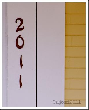 2011 01 01 IMG 7033w