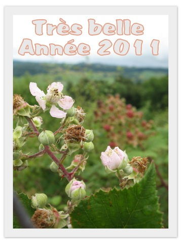 2010_08_02