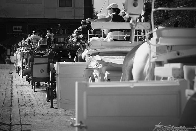 Kraków, Rynek. Skórka - niezbędne wyposażenie każdej dorożki. Dla odmiany siedzenia obiite materiałem.