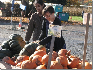 Scholz Pumpkin Farm 122