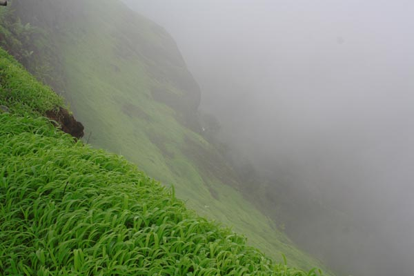 Steep Fall from Sinhagad